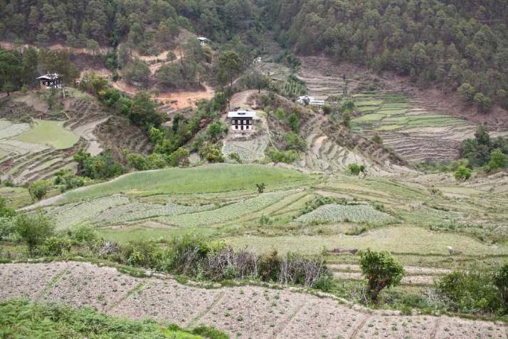 Zwar gedeihen in Bhutan unzählige Gemüsesorten, doch die Hänge sind steil und schwer zu bewirtschaften.