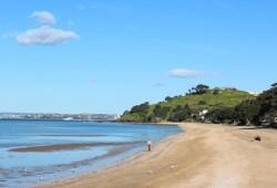 Der Cheltenham Beach lädt zu einem Spaziergang zum North Head ein.