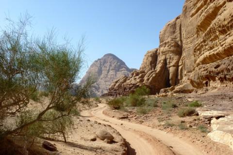 Reisebericht Jordanien Franz 10