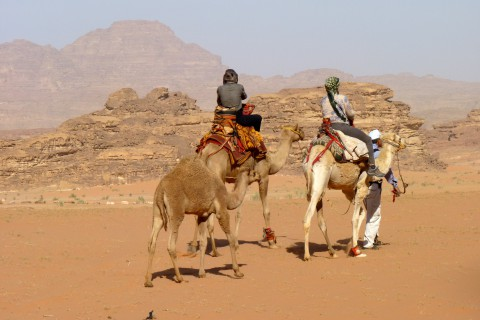 Reisebericht Jordanien Franz 01