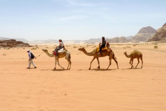 Reisebericht Jordanien Franz 02