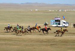 Reisebericht Mongolei 3 (c) WORLD INSIGHT