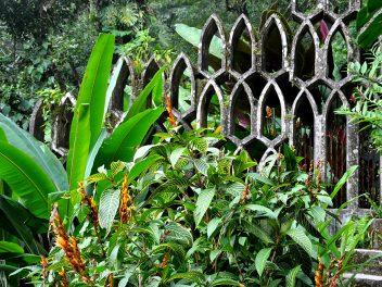 Der Traumgarten von Las Pozas