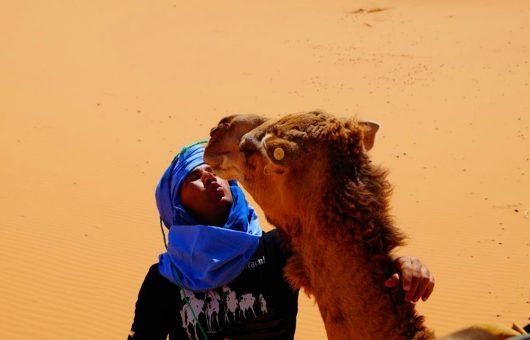 Das Lied der Wüste