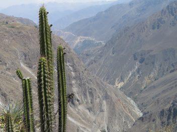 Auf den Spuren der Inkas