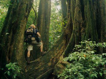 Das Naturparadies Costa Rica in 3D