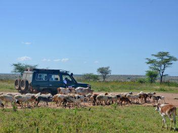 Auf Vortour durch Uganda